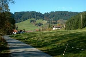 Ein schattiger Fußweg vor einem idyllischen Brgpanorama mit einzelnen Häusern.