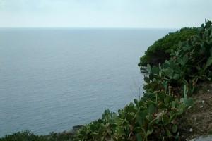 Grün bewachsener Bergvorsprung vor dem Meer bei diesiger Sicht.