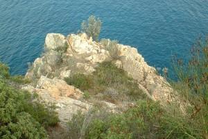 Blick über einen mit Sträuchern bewachsenen Bergvorsprung auf das Meer.