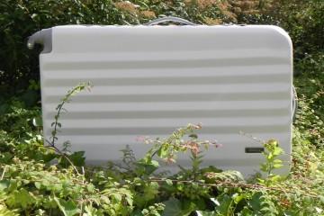 Ein weißer Metallkoffer steht zwischen grünen Sträuchern.