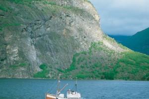 Ein Schiff fährt über das Meer, im Hintergrund große, teilweise bewachsene Felsen.