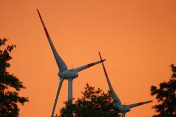 Zwei Windräder zwischen Bäumen im Sonnenuntergang.