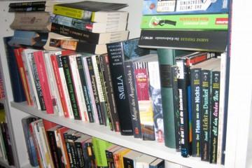 Nahaufnahme eines vollen, weißen Bücherregals.