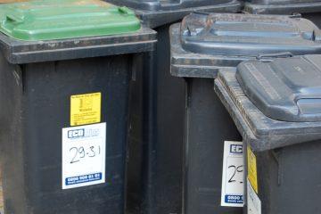 verschiedene Mülltonnen, einige mit grauem, eine mit grünem Deckel