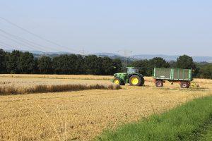 Ein grüner Traktor mit Anhänger fährt über einen grün bewachsenen Feldweg auf ein schon teilweise abgeärntetes Weizenfeld